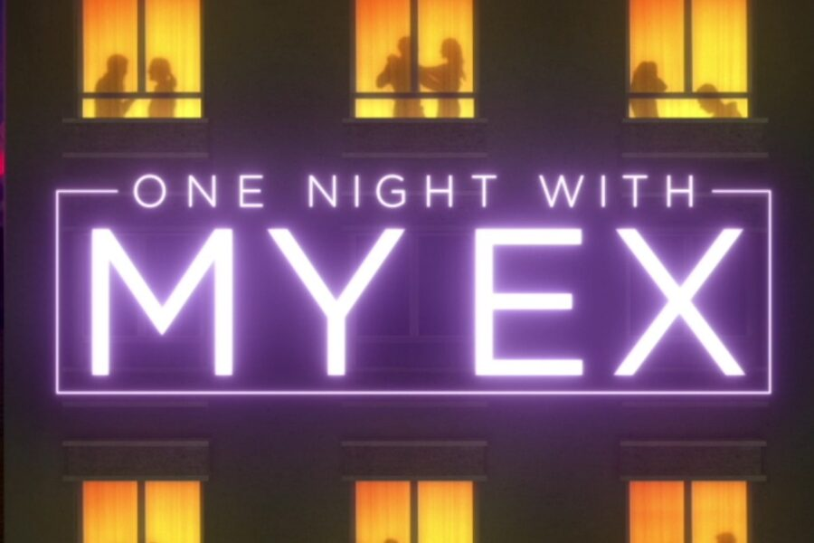 one-night-with-my-ex-work