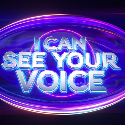 I Can See Your Voice Theme